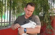 חוג חיות חוויתי לילדים סקרנים