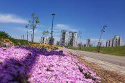 כרמי גת צפון-צפון: רק בנייה לגובה, לא ייבנו בתים צמודי קרקע