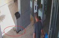 כרמי גת: נחש צפע התגלה סמוך לבניין מגורים בהנרייטהסאלד